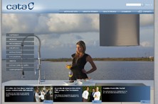 Cata corporate website
